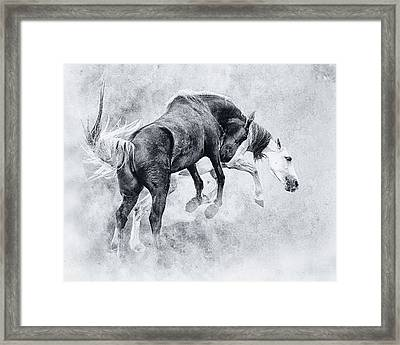 Wild Ones Framed Print by Ron  McGinnis