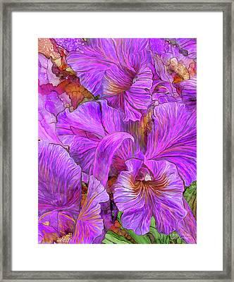 Wild Orchids Framed Print