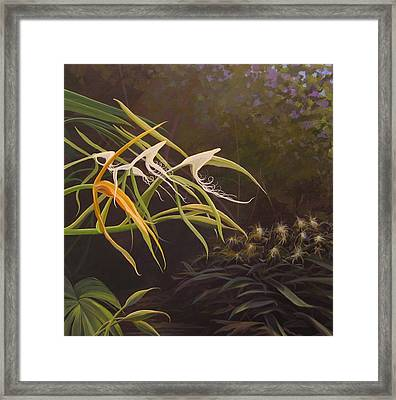 Wild Orchids Framed Print