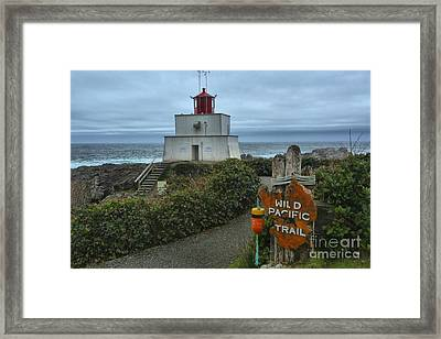 Wild Pacific Lighthouse Framed Print by Adam Jewell