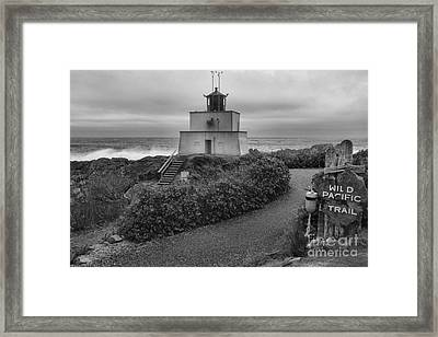 Wild Pacific Trail Black And White Lighthouse Framed Print by Adam Jewell