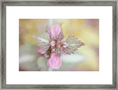Wild Pink Flowers Framed Print