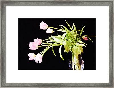 Wild Pink Tulips Framed Print