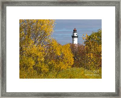 Wind Point Lighthouse In Fall Framed Print