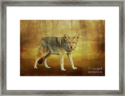 Wild Pup Framed Print