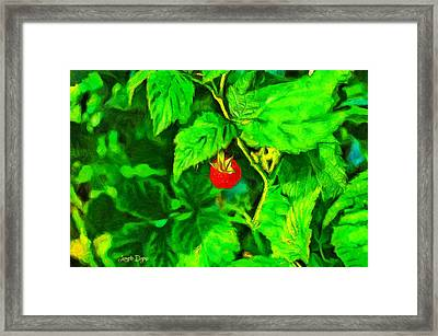 Wild Raspberry - Pa Framed Print by Leonardo Digenio
