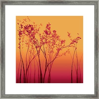 Wild Raspberry Framed Print