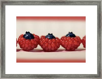 Wild Red Raspberries Framed Print
