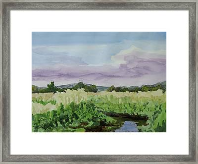 Wild Rice Field Framed Print by Bethany Lee