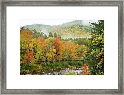 Wild River Bridge Framed Print by Susan Cole Kelly