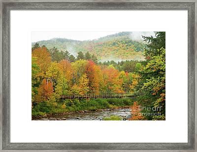 Wild River Bridge Framed Print
