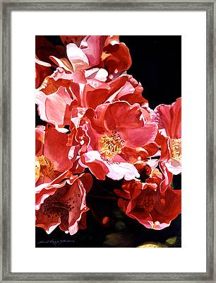 Wild Roses Framed Print by David Lloyd Glover