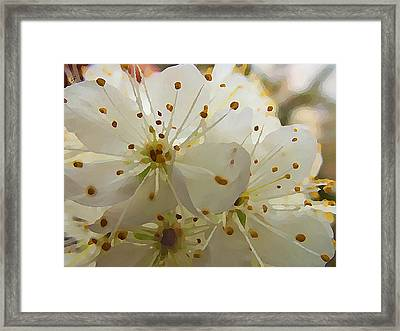 Framed Print featuring the digital art Wild Sand Plum  by Shelli Fitzpatrick