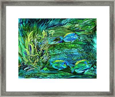 Wild Sargasso Sea Framed Print