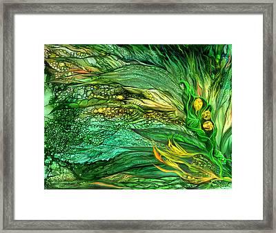 Wild Seeds Of Spring Framed Print by Carol Cavalaris