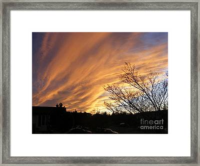 Wild Sky Of Autumn Framed Print by Barbara Griffin