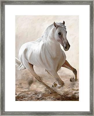 Wild Spirit Framed Print by James Shepherd