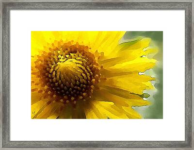 Framed Print featuring the digital art Wild Sunflower Up Close by Shelli Fitzpatrick