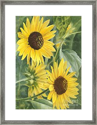 Wild Sunflowers Framed Print by Sharon Freeman