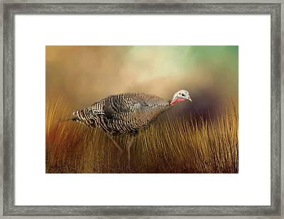 Framed Print featuring the photograph Wild Turkey Hen by Donna Kennedy