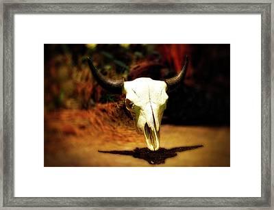Wild West Bison Skull Framed Print