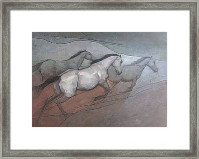 Wild White Horses Framed Print by Steve Mitchell