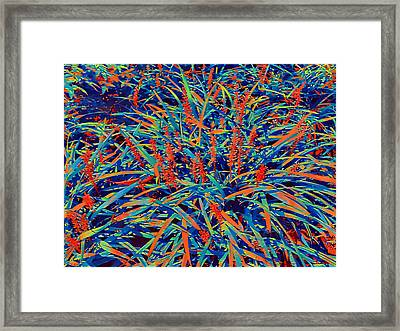 Abstract Wild Wildflowers Framed Print