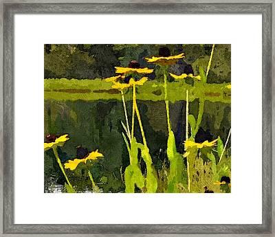 Wild Yellow Coneflowers 20 Framed Print