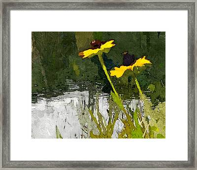 Wild Yellow Coneflowers 23 Framed Print