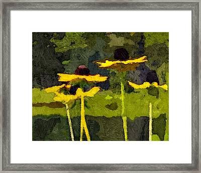 Wild Yellow Coneflowers 26 Framed Print