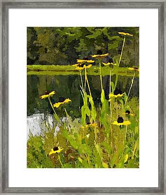 Wild Yellow Coneflowers 7 Framed Print