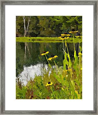 Wild Yellow Coneflowers 8 Framed Print