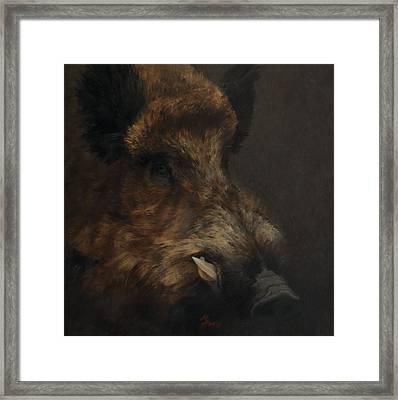 Wildboar Portrait Framed Print