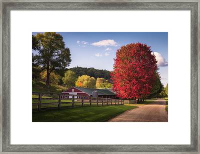 Wildcat Hollow Farm Framed Print