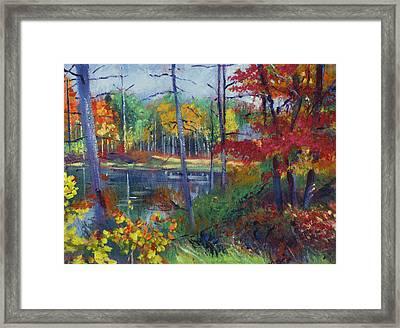 Wilderness Lake Framed Print