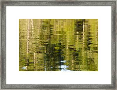 Wilderness Reflections Framed Print