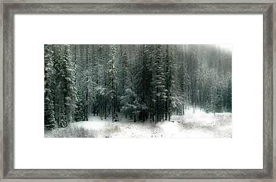 Wilderness Snowfall Framed Print by Athena Mckinzie
