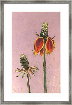 Wildflower 1 Framed Print by Ixchel Amor