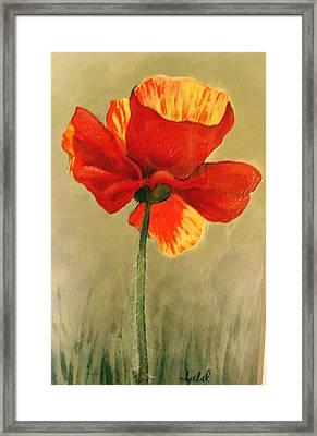 Wildflower 2 Framed Print by Ixchel Amor