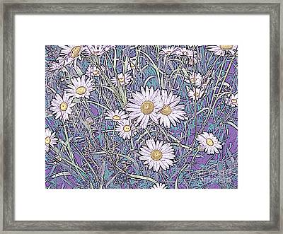 Wildflower Daisies In Field Of Purple And Teal Framed Print