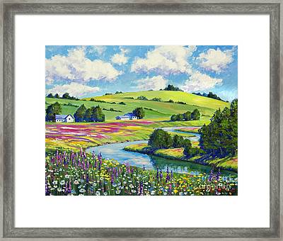Wildflower Fields Framed Print by David Lloyd Glover