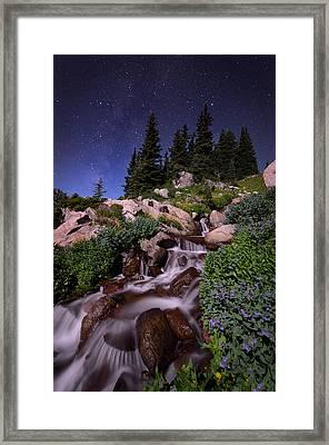Wildflower Finale In The Indian Peaks Framed Print