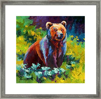 Wildflower Grizz Framed Print by Marion Rose