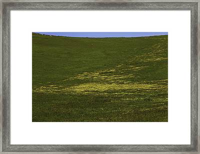 Wildflower Hillside Framed Print