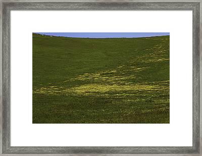 Wildflower Hillside Framed Print by Garry Gay