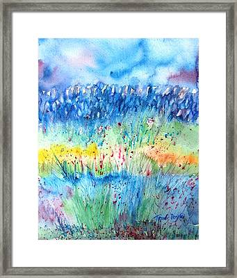 Wildflower Meadow And Stone Wall Inisheer  Framed Print by Trudi Doyle