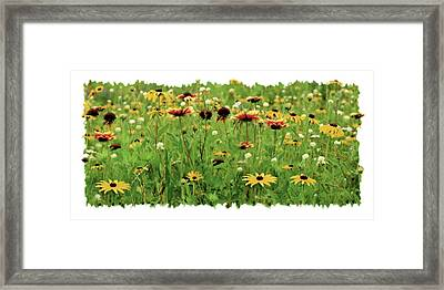 Wildflower Meadow Framed Print by JQ Licensing