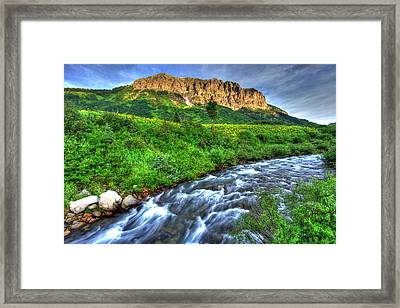 Wildflower River Framed Print by Scott Mahon
