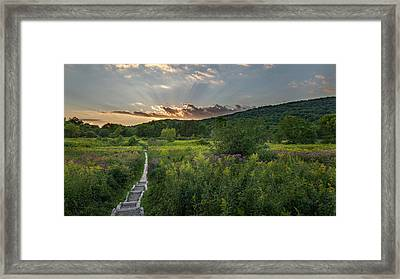 Wildflower Sunset 2016 Framed Print