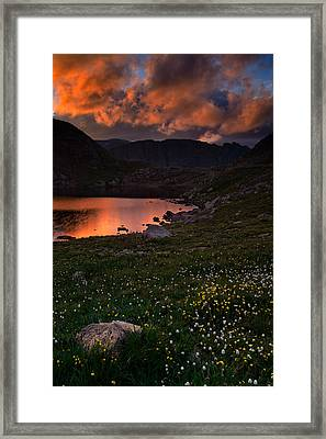 Wildflower Sunset At Summit Lake Framed Print by Mike Berenson